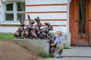 Un petit garçon aide le lapin à monter.